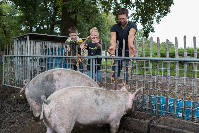 Van links af Lukas, Jonathan en Rob Kleinlangevelsloo bij de varkens die eikels krijgen.