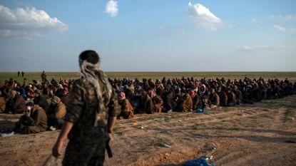 """""""Zeker 430 Europese Syriëstrijders opgesloten in noorden van Syrië, onder hen ook 54 Belgen"""""""