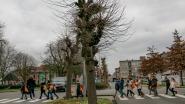 Leerlingen en buurtbewoners ruimen zwerfvuil op in Elisabethwijk