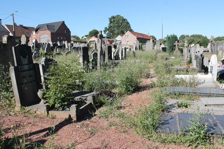 De oude begraafplaats van Pamel ligt er verloederd bij.