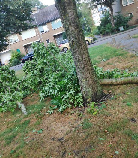 Stormschade in de regio: 'Valt mee gelukkig'