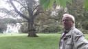 Fons van Dijk, op Landgoed Steenenburg; overigens bij een andere boom dan de bomen waarover de discussie nu gaat.