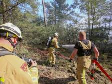 Brandweer 'deelt snel harde klap uit': bosbrand Milheeze snel geblust