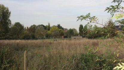 Gemeente koopt lap grond naast voetbalterrein KSV Maarkedal met oog op centralisering voetbalploegen