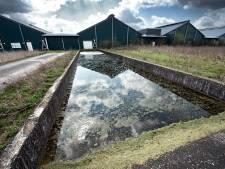 Megafarm Groesbeek: 1. Wonen 2. melk 3. kippen