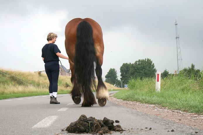 Uitwerpselen van een paard moeten voortaan op last van de gemeenteraad worden opgeruimd in de gemeente Moerdijk.