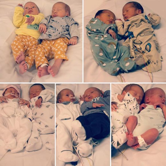 Vijf van de zes schattige tweelingen.