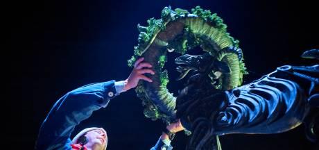 Nieuwe prins van 't Krabbegat wordt digitaal gepresenteerd