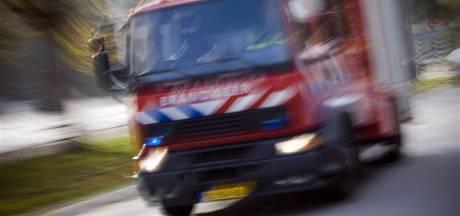 Brandweer Veenendaal heeft last van wespen bij blussen van brandje