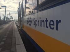 Tijdelijk geen extra sprinters tussen Den Bosch en Oss in de spits, NS past dienstregeling aan
