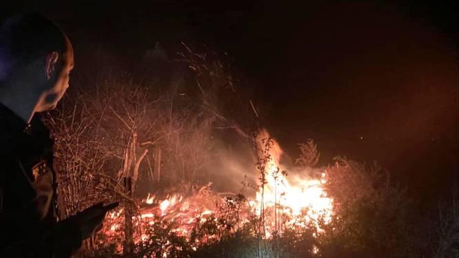 Uitslaande brand blijkt afvalbrand: brandweer heeft 200 meter aan brandslangen nodig