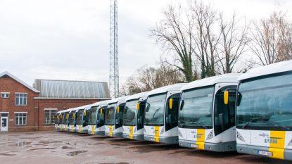 De Lijn bestelt 182 bussen bij Vlaamse busbouwers