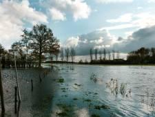 VVD wil één waterschap voor heel Brabant