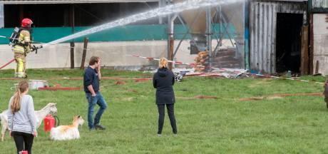 Meer dan honderd geiten omgekomen bij stalbrand in Zeewolde