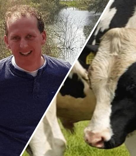 Boer Gerrit uit Ommen werd aangevallen door zijn stier: 'Het ging zo machtig snel'