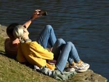 Trois étangs bruxellois ouverts à la baignade publique cet été