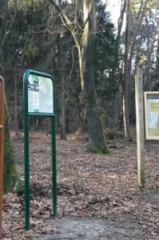 Bebording op de Veluwe: door de bomen is het bos niet meer te zien