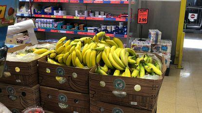 Exotische spin op bananen in Lidl niet gevaarlijk