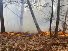 Spelende kinderen veroorzaken bosbrand in Groesbeek