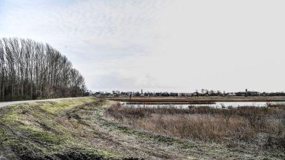 Jagers schieten wild in natuurgebied, vzw Vrienden van de Schelde vraagt opnieuw actie