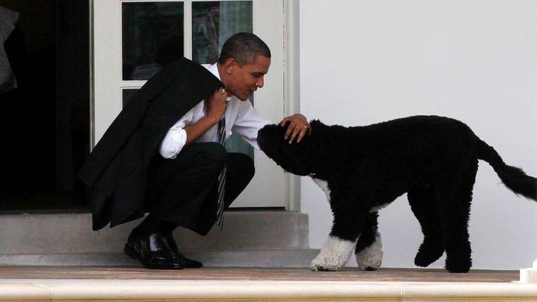 President Barack Obama aait zijn hond Bo. Beeld REUTERS