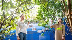 """#SAMENTEGENCORONA Marie en Manon maken postkaartjes voor een goed doel: """"Je steentje bijdragen, hoe klein of groot dat ook is"""""""