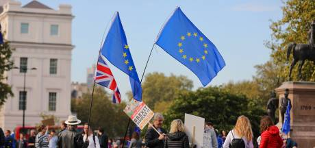 Duizenden Britten eisen referendum brexitdeal