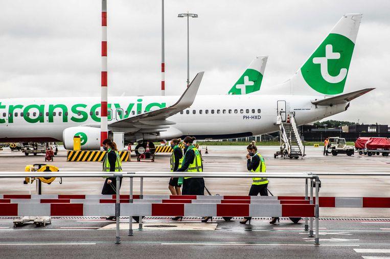 De man vloog op 24 juni van Las Palmas naar Schiphol met luchtvaartmaatschappij Transavia. Beeld ANP