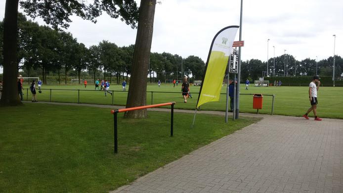 Twee dagen werd gevoetbald op het complex van Prinses Irene om de Maashorstcup.