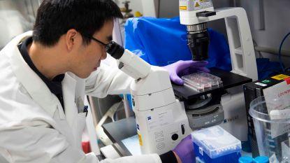 Derde terminale patiënte kankervrij verklaard na experimentele immunotherapie