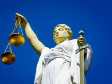 76-jarig 'lichtgewicht' dat een agent sloeg al genoeg gestraft door rake klappen terug