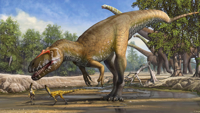 Een ongedateerde artist-impression van de Torvosaurus, de onlangs ontdekte grootste vleesetende dinsosaurus ooit gevonden in Europa.