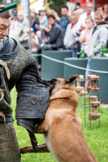 Politiehondenclub wil dat Wehlse trainer stopt met negatieve verhalen vertellen