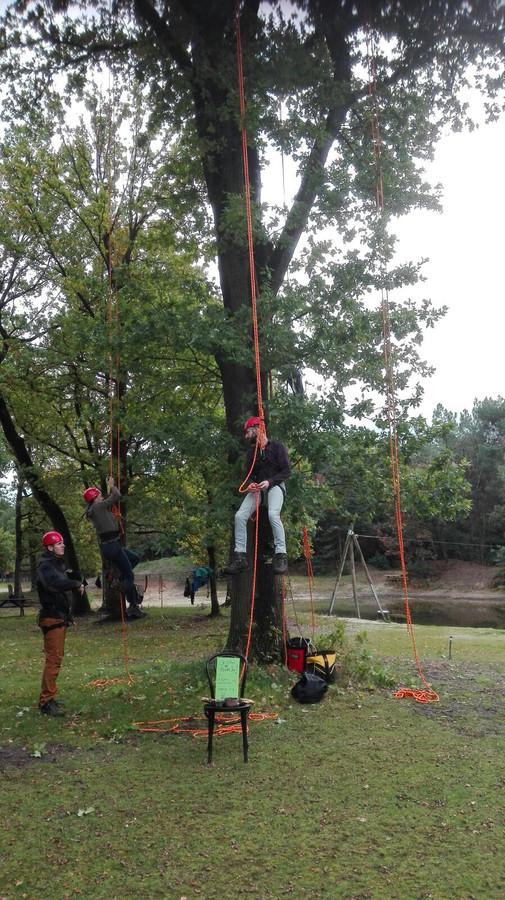 oerweekend maashorst boomklimmen