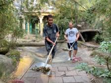 Zanger Bilal Wahib schept poep van die 'tigers tigers tigers' in DierenPark Amersfoort