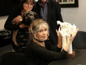 Brigitte Bardot récompensée par GAIA