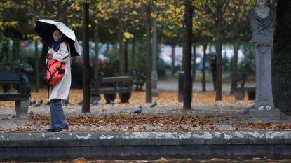 Rukwinden tot 90 km/uur: parken nog zeker tot deze namiddag dicht