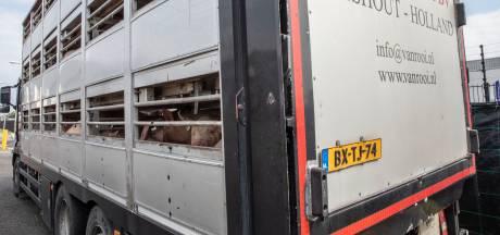 Vleesverwerker Van Rooi Meat na coronaproblemen: 'Geen werknemers meer in grote Duitse huizen'