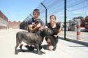 Veerle Debaillie en een medewerker van het asiel met de in beslag genomen stafford en haar pup. RECHTSONDER: ook deze chihuahua's werden weggehaald.