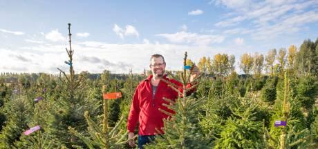 Coronavirus zorgt voor vervroegde 'kerstkoorts': 'Mensen vragen nu al wanneer de bomen komen'