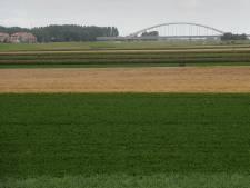 Bedrijven in Auvergnepolder dichterbij dan ooit: 'We willen groene, milieuvriendelijke werkgelegenheid'