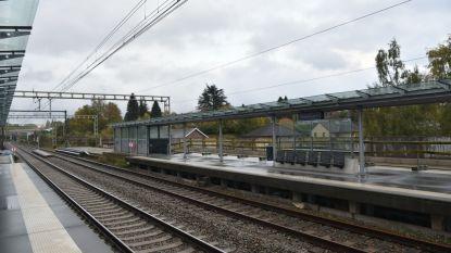Ongeval tussen trein en werfvoertuig in Hoeilaart: geen gewonden, wel hinder op spoor