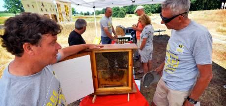 'Negatieve' aandacht voor honingbij pakt positief uit in Vlijmen