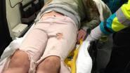 Meisje van 12 aangereden op zebrapad in Asse: bestuurder pleegt vluchtmisdrijf