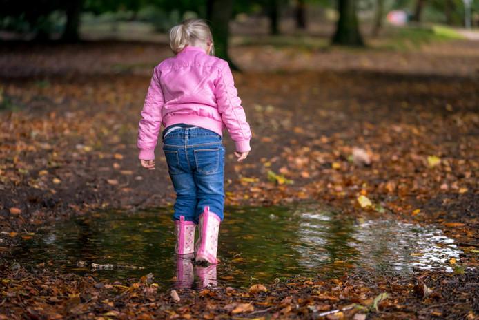 Herfst in Brabant - Het Langven in Best (lezersfoto).