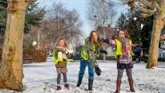 Drukke dag voor strooidiensten, sneeuwpret voor de allerjongsten