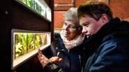 Aquariumvereniging De Minor houdt tentoonstelling
