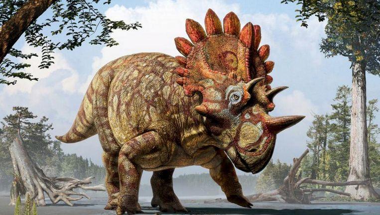 Reconstructie van de nieuwe dinosoort.