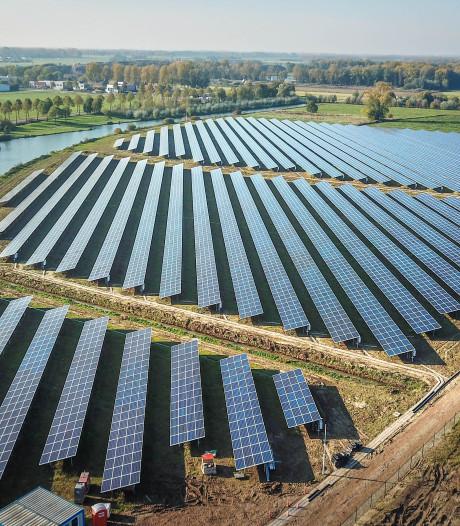 Bijenkast en paddenpoel: natuur krijgt meer ruimte bij de aanleg van zonneparken