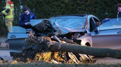 VIDEO. Vier jongeren zwaargewond na crash tegen boom met hoge snelheid in Brugge